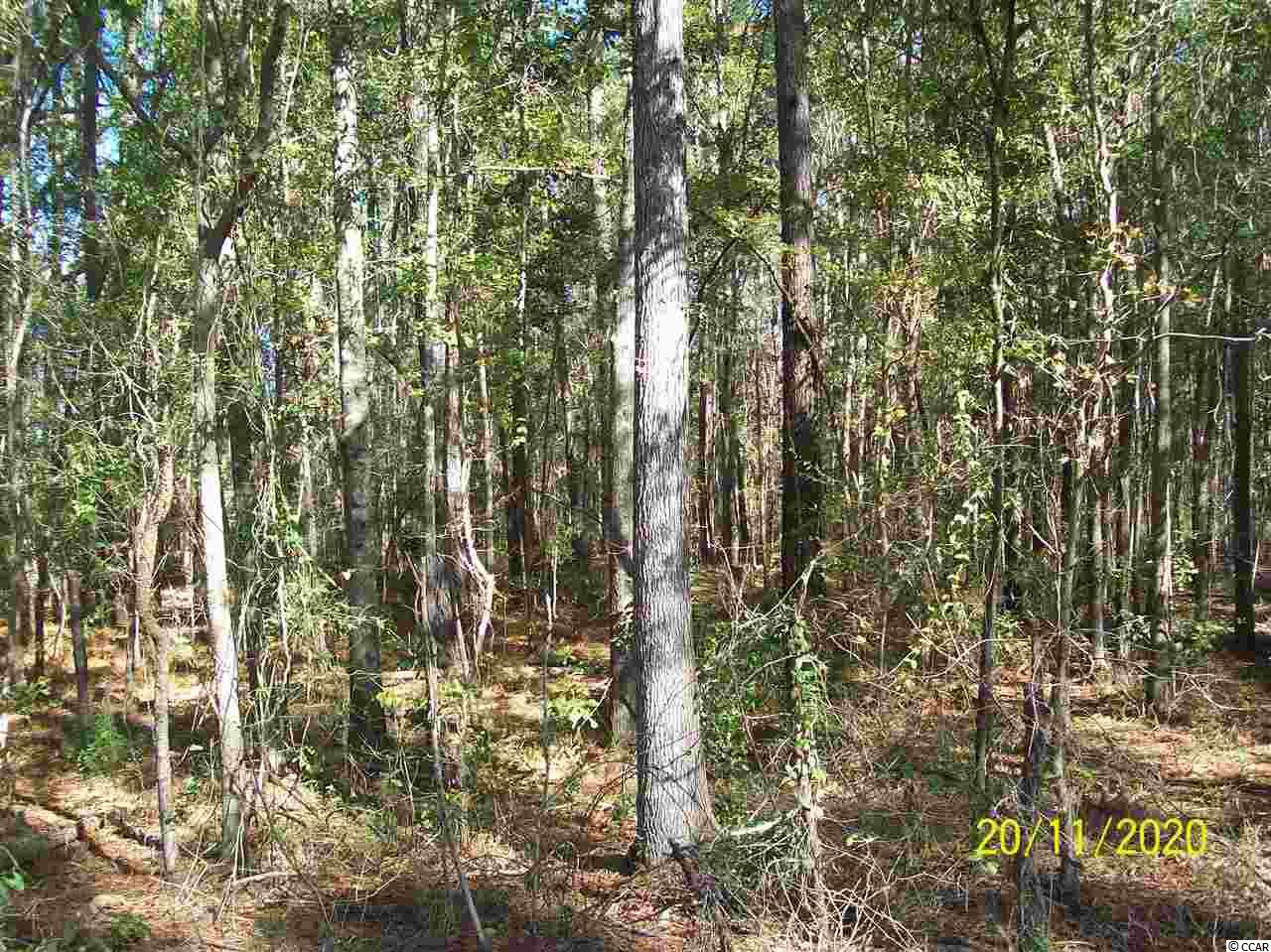 BEAUTIFUL LOT IN THE SANTEE AREA OF GEORGETOWN COUNTY, HAS BOTH PUBLIC WATER/SEWER, BUY ONE OR BOTH LOTS NEXT TO EACH OTHER TO MAKE 1.12 ACRES, GREAT PRICE!!!!!