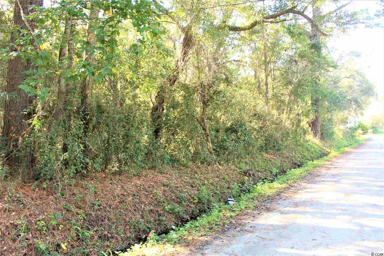 Large .49 Acre lot. Located in Pawleys Island this lot is close to excellent dining, state parks and pristine beaches. Offering a location that is private with easy access north to Myrtle Beach or South towards Georgetown and Charleston.