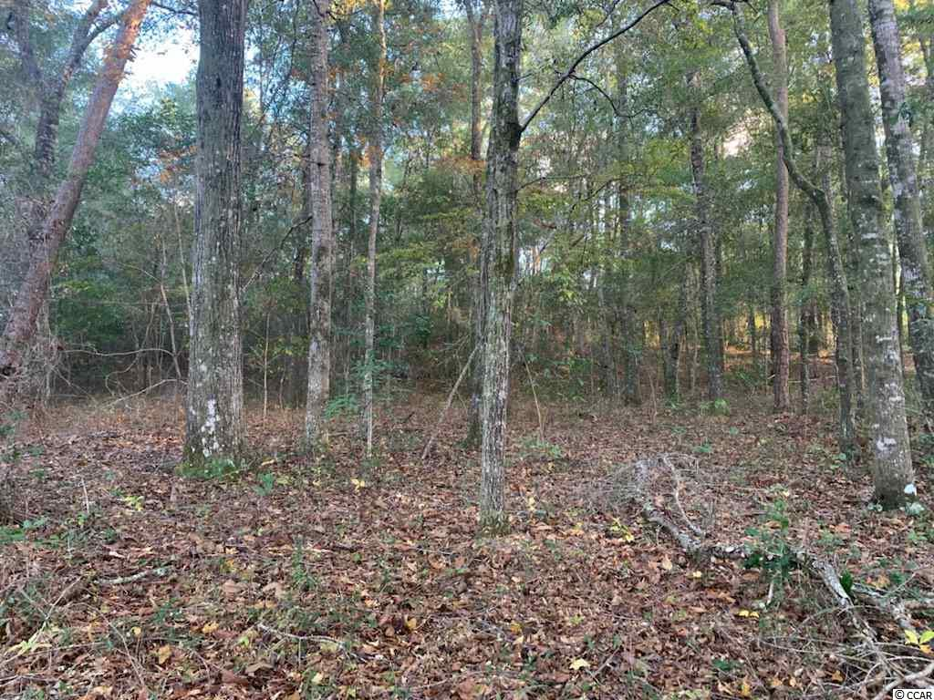 Beautiful wooded lot across the street from black river. Just minuets from the public boat ramp Restricted, Very desirable neighborhood 15 minuets from Georgetown.