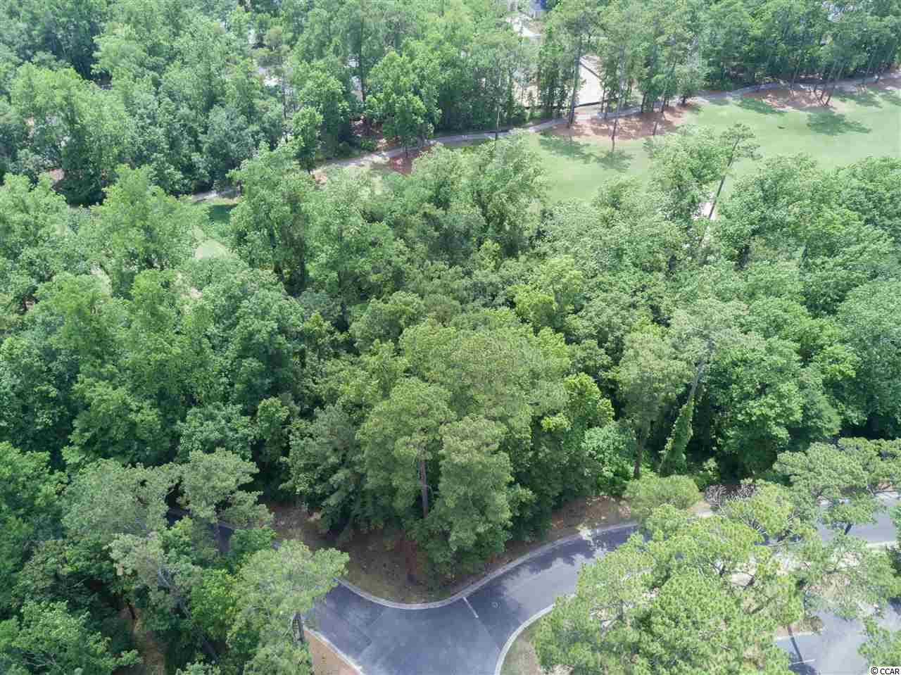 You don't want to miss out on this DOUBLE LOT located in Tidewater Plantation! This combined lot offers .64 of an acre and backs up to the 7th hole of the prestigious Tidewater Plantation Golf Course and offers great views and lots of privacy. This lot has just one tax map number and one HOA. This lot is located across from the Clubhouse and is situated on Spinnaker Dr and Lighthouse Dr. Tidewater Plantation is a gated community that offers a variety of amenities including 5 swimming pools, a fitness and exercise center, tennis courts, an amenity center, a restaurant, a beach house cabana, and a golf course. Schedule a time to see this lot today!