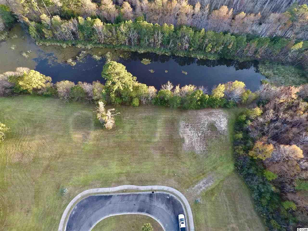 Over 1/3 of an acre lot - ready for you to build your dream home in the gated community of South Island Plantation.  Enjoy the many available amenities such as the 5000+ square foot clubhouse with kitchen/bar, walking trails, full fitness center, swimming center which includes pool and hot tub.  Stop by to see the potential of this lot, envision where you will build your home and consider the enjoyment offered by living in this community!