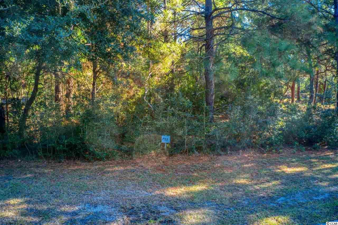 Must-see, half-acre lot in the desirable Dunes Oaks section of Debordieu Colony. Come build your custom home on this amazing lot overlooking a beautiful, peaceful pond. A golf cart ride away from the beach, this lot is tucked away and offers privacy and plenty of possibilities for building your dream vacation or permanent home in this gorgeous community.  Debordieu Colony is a gated beach community just outside of Pawleys Island, SC with an upscale, private golf course that will test golfers of any skill level. Once you are done with your round, enjoy dinner or drinks in the beautiful club house or head over to the tennis courts. Spend time at the beach club by the ocean or sitting around the pool. Launch your boat into the salt creek that leads out to North Inlet for some of the best fishing around. Don't forget to check out the walking/running paths and let the kids play on the playground or bring home some fresh crabs from the crabbing area. You can find whatever makes you happy in this great community. Call your agent today to see the site of your dream home in your dream community.