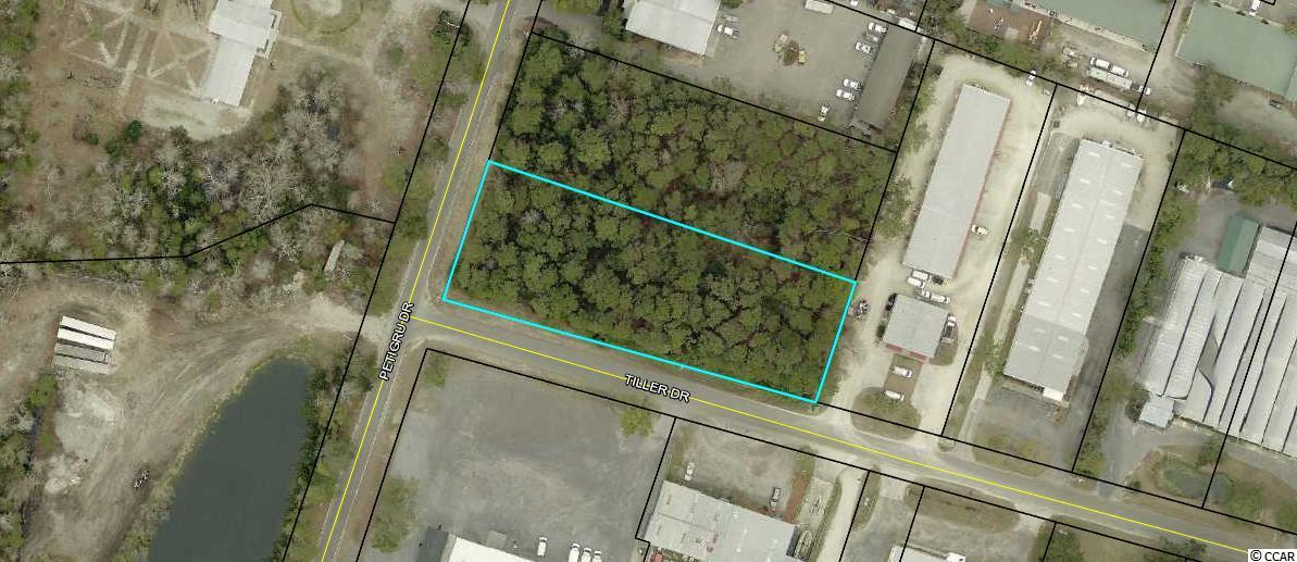 Commercial Lot; Corner Lot on Petigru Drive and Tiller Drive. Wooded Lot situated in Commercial and Residential area. Endless Possibilities for this lot in the Heart of Pawleys Island.