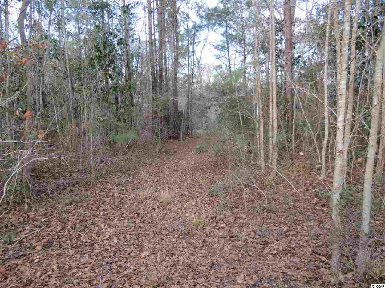 Wooded residential acreage with Choppee Creek frontage. Public water and sewer available.