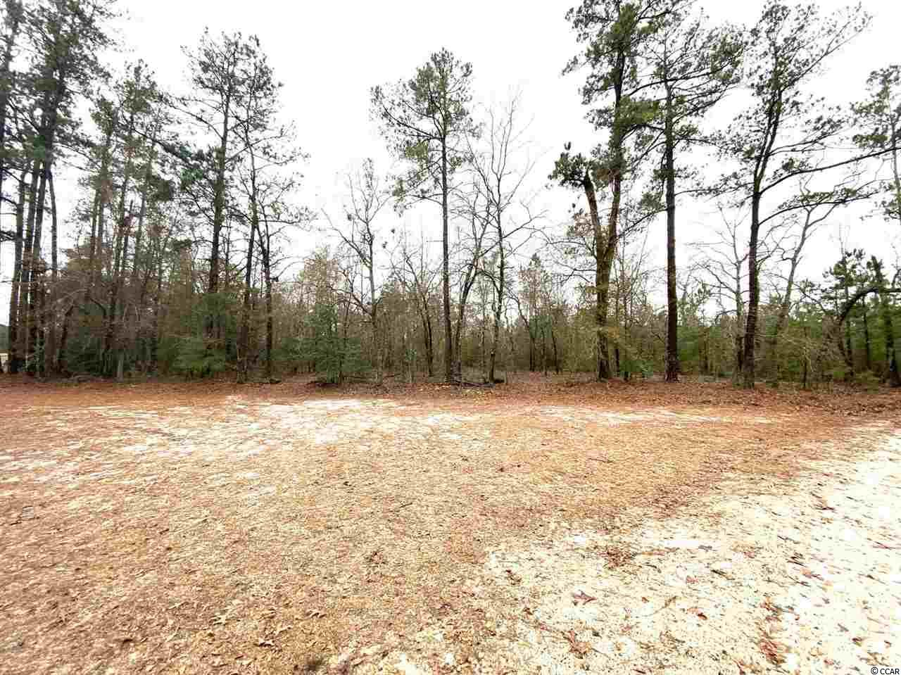 Beautiful 1.05 acre wooded lot- NO HOA- All high and dry- Located close to Hwy 22 with easy access to north end of Myrtle Beach.