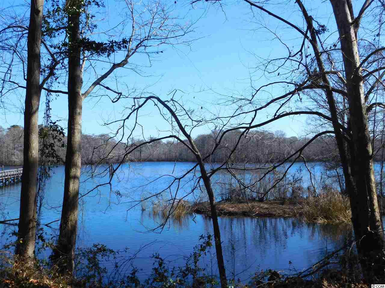 Breath-taking, expansive, direct waterway/river views from this spectacular .81-acre lot- within walking distance of Bucksport Marina.  Lot is phenomenal with water views to match and yes public water (Bucksport water) and public sewer (Grand Strand Water & Sewer) are accessible to lot with purchaser paying hook-up fees to access.  Lot is not only beautiful but also has not ever been flooded even during high waters of Hurricane Matthew.  This is a rare find and is priced to sell.