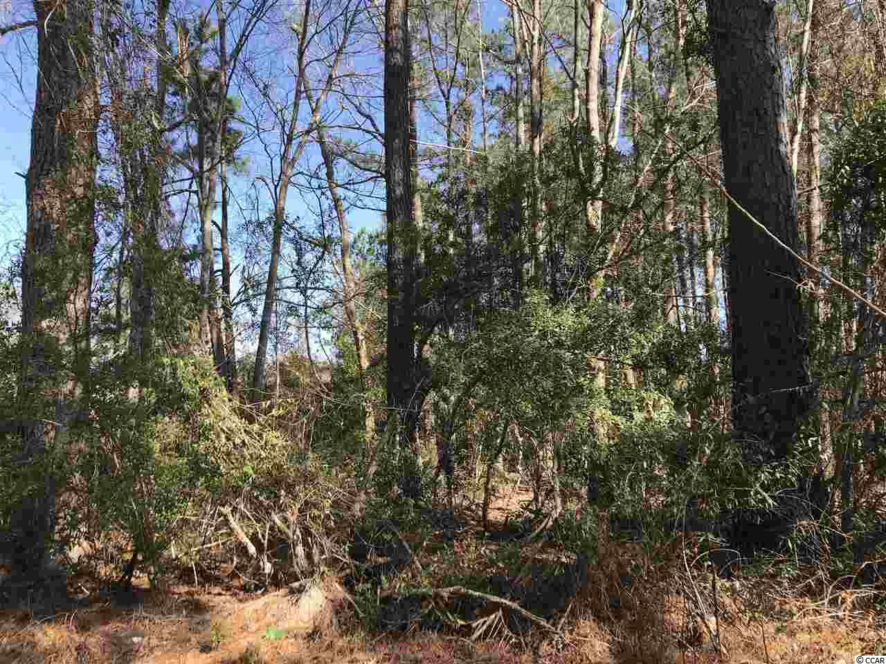 NICE LOT ON PEE DEE HIGHWAY.  BUCKSPORT WATER AVAILABLE.  JUST UNDER A HALF ACRE LOT.  OUT IN THE COUNTRY JUST A SHORT DRIVE TO TOWN. VERY FEW RESTRICTIONS AND COUNTY ZONING.