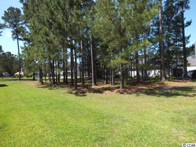 Lot is located in popular golf community of Waterford Plantation. Many amenities await you in this friendly, active community which includes sidewalks, Olympic-sized pool, cabana, tennis courts, basketball, volleyball, playground, fitness center and walking trails. Waterford Plantation is close to the post office, banks, hospitals, beach, shopping, restaurants, theaters, amusements and all that Myrtle Beach has to offer. All information is deemed reliable but not guaranteed. Buyer is responsible for verification of lot size