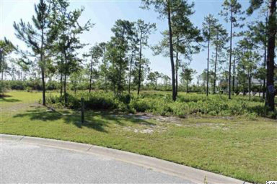 Choose your own Builder ...Large quite Cul-de-Sac lot with small pond is the perfect place to build your dream home. Easy access to 501. Located in popular golf community of Waterford Plantation. Many amenities await in this friendly, active community which includes sidewalks, Olympic-sized pool, cabana, tennis courts, basketball, volleyball, playground,fitness center and walking trails. Waterford Plantation is close to the Coastal Community College, CF Post office, banks, hospitals, shopping, restaurants, amusements and only a short drive to the beach! Enjoy all that Myrtle Beach has to offer.