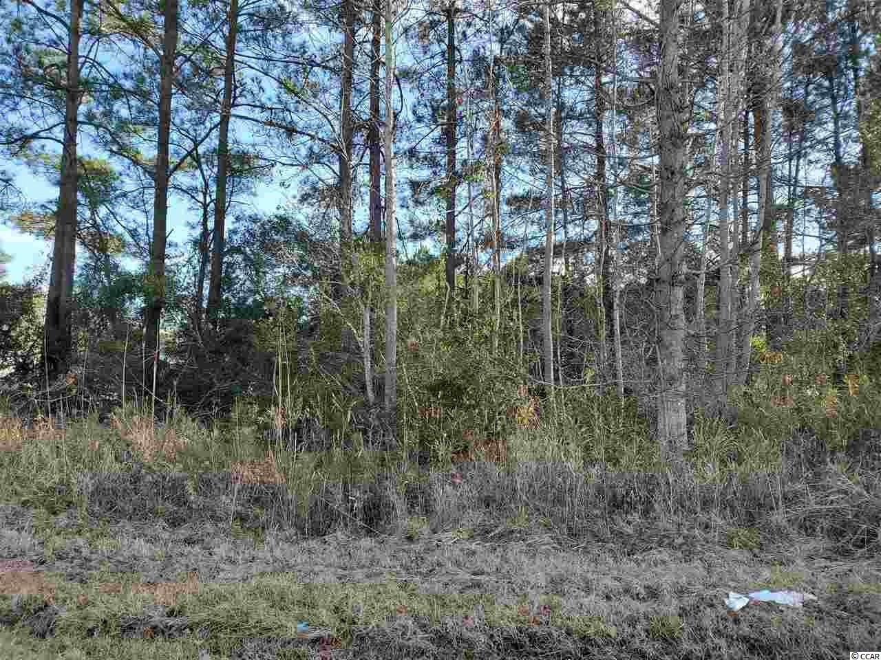 One acre lot for Sale in Little River, SC.  Only a 10-15 minute drive to the beach.  Not in a designated flood zone. Manufactured and stick built homes are permitted. No HOA.  Located near shopping, dining, and entertainment.