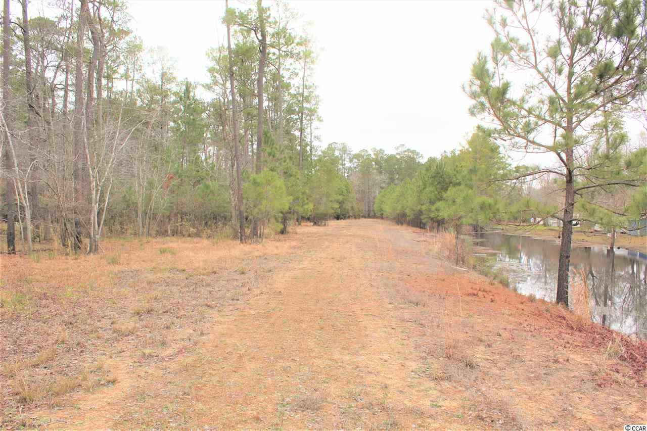 Nearly 13 lakefront acres on Pitch Landing Road in Conway ready to develop in quiet country setting just down the street from the Pitch Landing boat landing and next to the South Ferry community. Property has already been subdivided into 4 - 3+ acre lots, all of which have electricity to them with public water and sewer on Pitch Landing Road, as well as individual tax map numbers. Road already in place to provide access to all 4 lots. Must see to fully appreciate!