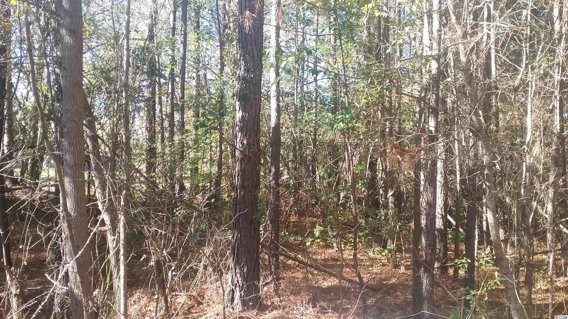 Approximately three acres of land outside of city limits.