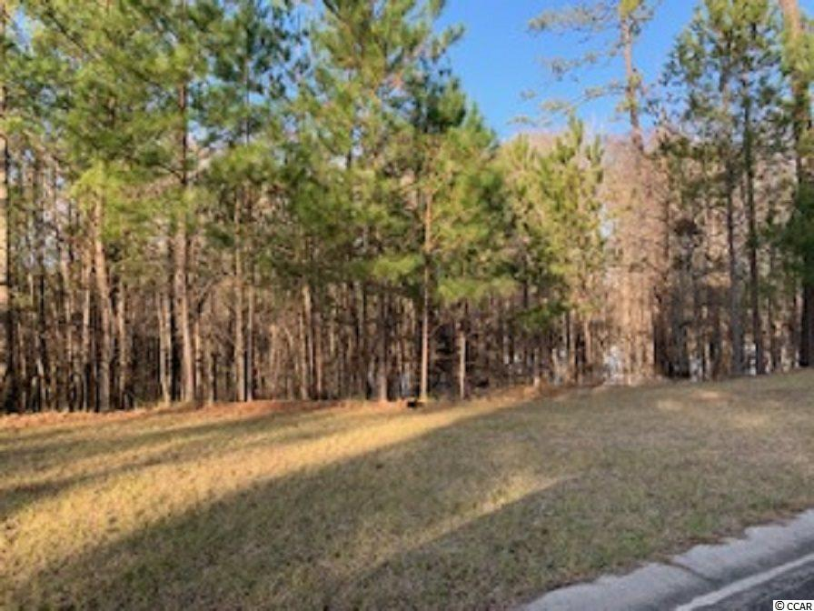 Great price for ready to build lot. No time frame to build. Close to Hwy22. Street lights,  Underground utilities, wide streets with both curbs and gutters. County water and sewer. River access launch for owners. Very quiet new development.