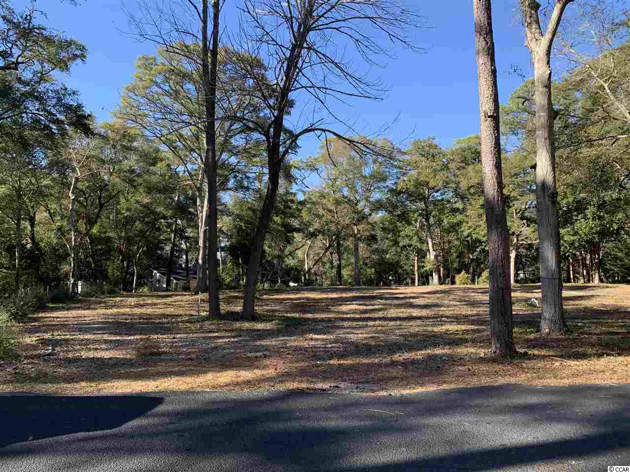 Build your dream house on the 1.18 acre lot in the magical Briarcliffe Acres.  Briarcliffe Acres is unlike any other neighborhood in the Myrtle Beach area.  Briarcliffe hosts lots of trees and spacious lots throughout and it's close to the beach.