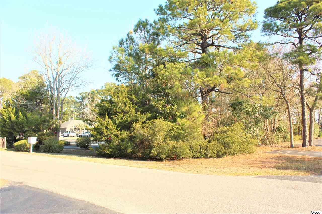 Don't miss this rare find, .23 Acre commercial lot in Surfside Beach. Lots of potential. Perfect location for an office building. Easy access in/out from HWY 17 Business, near new stop lights in Surfside. Located just 3 miles south of Market Common and 5 miles North of Murrells Inlet. Drive by today!