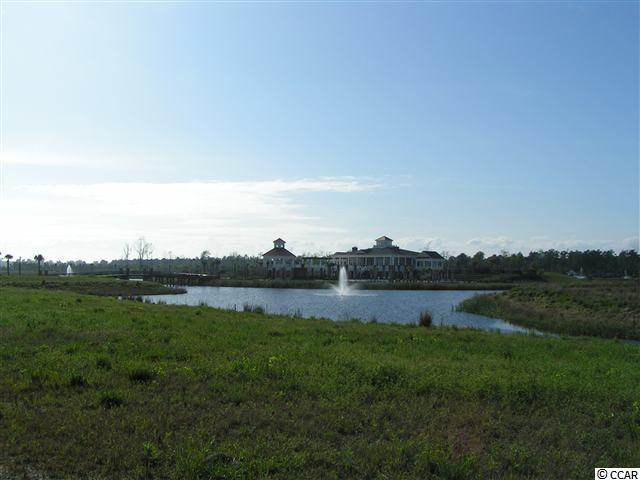 Beautiful Lakefront lot in the gated community of Waterway Palms Plantation. This lot is located on a large lake with views of the Island of amenities and much more! It is in the #1 school district in Horry county and contains one of the largest pools. There are many amenities located here on their magnificent Amenities Island. You will also have access to boat storage and a private boat launch into the Intracoastal Waterway! Sit back and relax in this upscale community while enjoying everything the beach and intracoastal waterway has to offer. Measurements and square footage are estimated and not guaranteed and should be measured by the buyer. the buyer is responsible for verification.