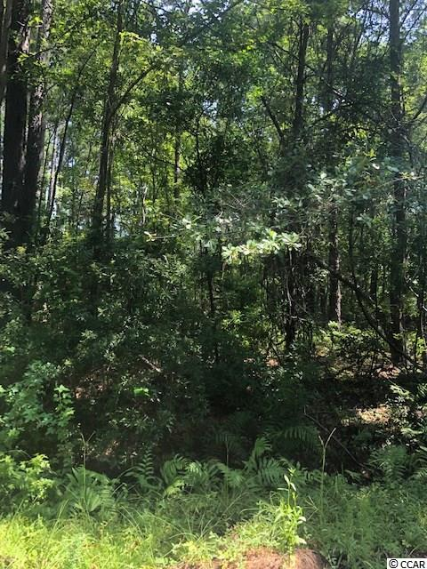 This residential lot, is just under 1/2 an acre, in the quiet neighborhood off of Penny Royal Road. Within a few miles of a public boat landing along the Sampit River, also within a few miles of the Historic Waterfront of Georgetown, and within an hour drive to Charleston or Myrtle Beach.