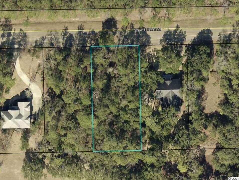 Nice .5 acre lot located in the private gated community of DeBordieu.  This lot offers a great location in this wonderful coastal community that offers fantastic beach, dining, golf, tennis, fitness center, pools, outdoor recreation area and so much more.  Hurry before this lot is gone!