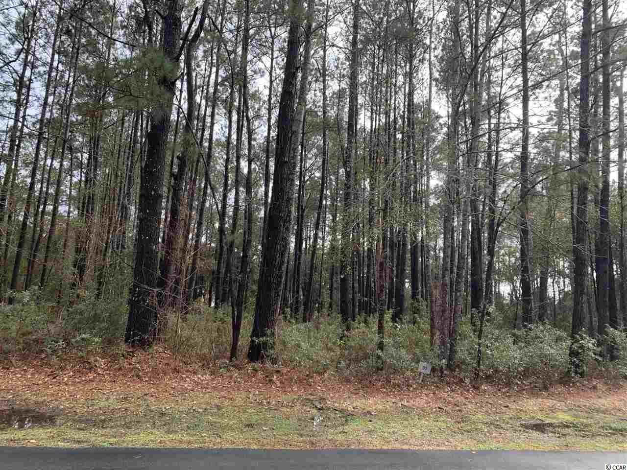 Located on a quiet cul-de-sac, this wooded lot backs up to the 3rd fairway of DeBordieu's Pete Dye golf course. It is in a central location to the golf clubhouse, and still short ride to the beach by golf cart - the perfect location for to build a Lowcountry home. Within the gates of DeBordieu's private community, you can enjoy its many amenities, from the miles of private beach, to the pool and Beach Club, to the boat landing leading to DeBordieu Creek and North Inlet.