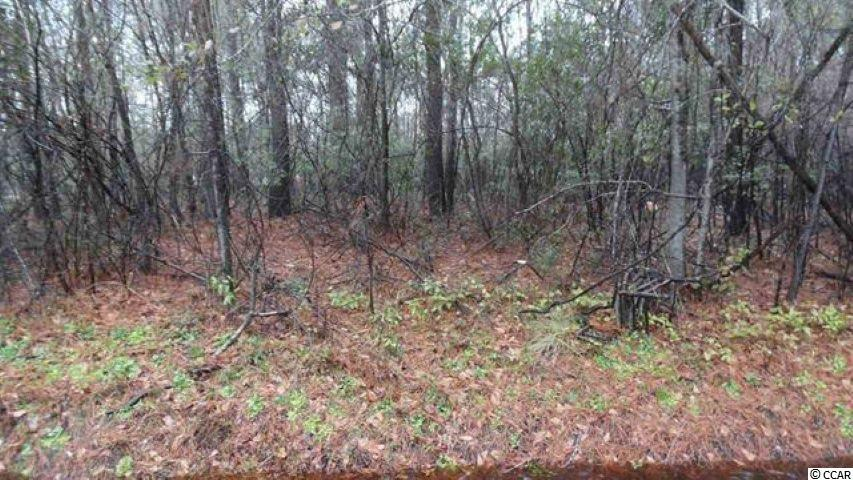 Great Lot for any raised River Home. Utilities available. Boat Landing right around the corner for the Waccamaw River.