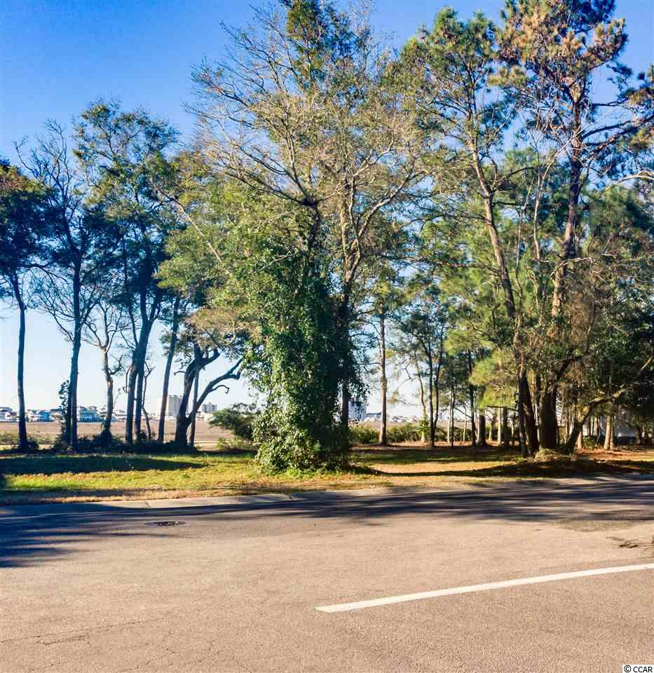 .23 acre lot available in the highly desired, golf-oriented community of Tidewater Plantation. Build your dream home! Bring your own builder, with no timetable to build on this lot that backs up to the golf course. Tidewater Plantation amenities include a gated community with security guard, pools, fitness center, tennis courts, and private beach cabanas. Location is convenient to plenty of shopping, dining, golf, and entertainment options, and just a short drive to the beach. Measurements are not guaranteed and are the buyers responsibility to verify.