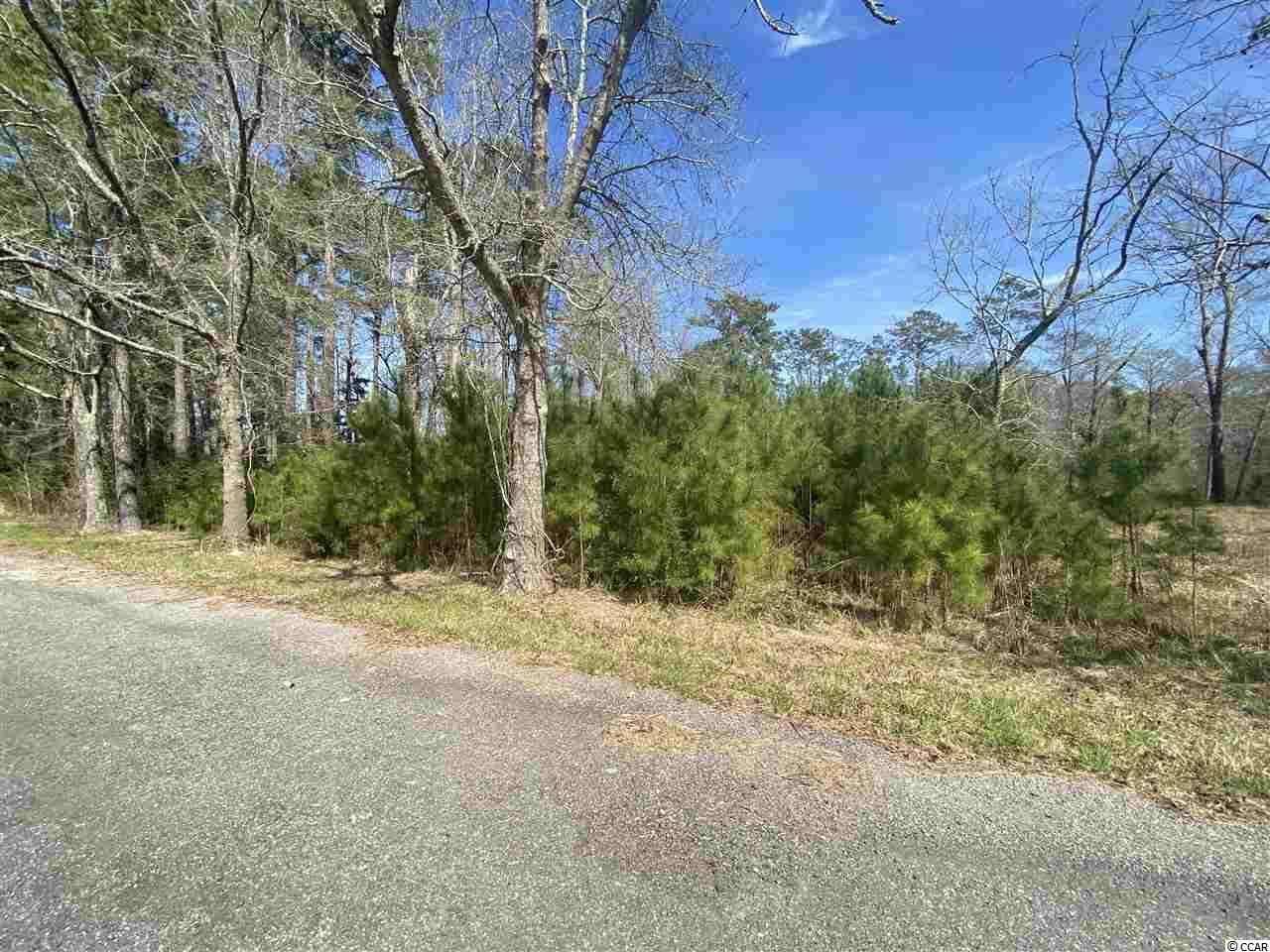 Waterfront lot located just a short drive to Bucksport Marina. Wooded deep water lot will make a nice homesite on the Waccamaw river which also serves as the intra-coastal waterway. Short boat ride to many waterfront experiences from Georgetown to Little River.