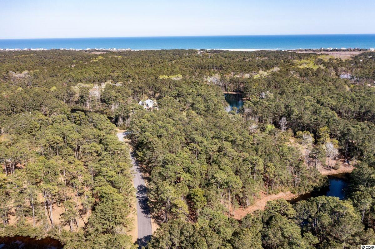 Lovely 3.06 acre homesite! Don't miss this opportunity to build your dream home in this unmatched community in Pawleys Island. There's nothing like Prince George on the entire Grand Strand with its unique vision for protecting its pristine tract of land that spans from the Atlantic Ocean to the Waccamaw River (ICW). The oceanside amenities include a swimming pool, clubhouse, tennis, volleyball and basketball courts, bike paths, nature trails, private beach access and a 5 acre lake. The riverside amenities include a RiverClubhouse with sitting area, fireplace, boardwalk and 28 slip marina along the Waterway.