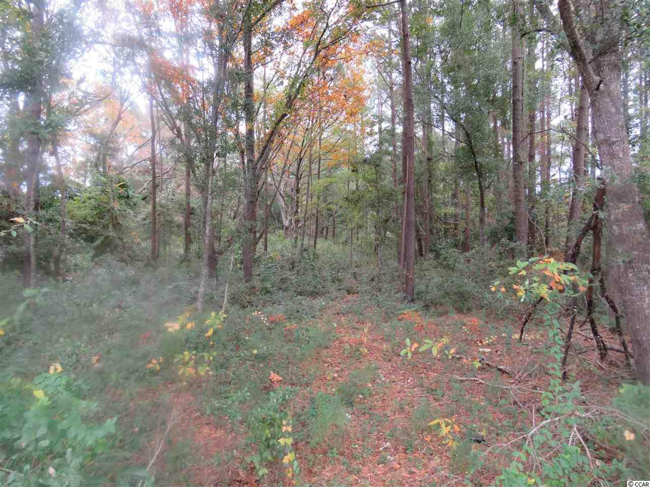 WHERE ELSE ARE YOU GOING TO GET 3 ACRES IN THE HEART OF LITTLE RIVER WITH FRONTAGE ON HWY. 17 AT THIS PRICE. GREAT LOCATION. ONLY 5 MINUTES FROM THE OCEAN IN THE GREAT GOLF AND FISHING TOWN OF LITTLE RIVER LOCATED ON THE NORTH END OF THE GRANDSTRAND,  THIS WOULD ALSO MAKE A GOOD BUY AND HOLD AS LITTLE RIVER GROWS THE VALUE WOULD GO UP.  CALL ME DIRECT OR CALL YOUR REALTOR TODAY, THIS WON'T LAST AT THIS PRICE!!! PLUS OWNER SAYS BRING ALL OFFERS!!