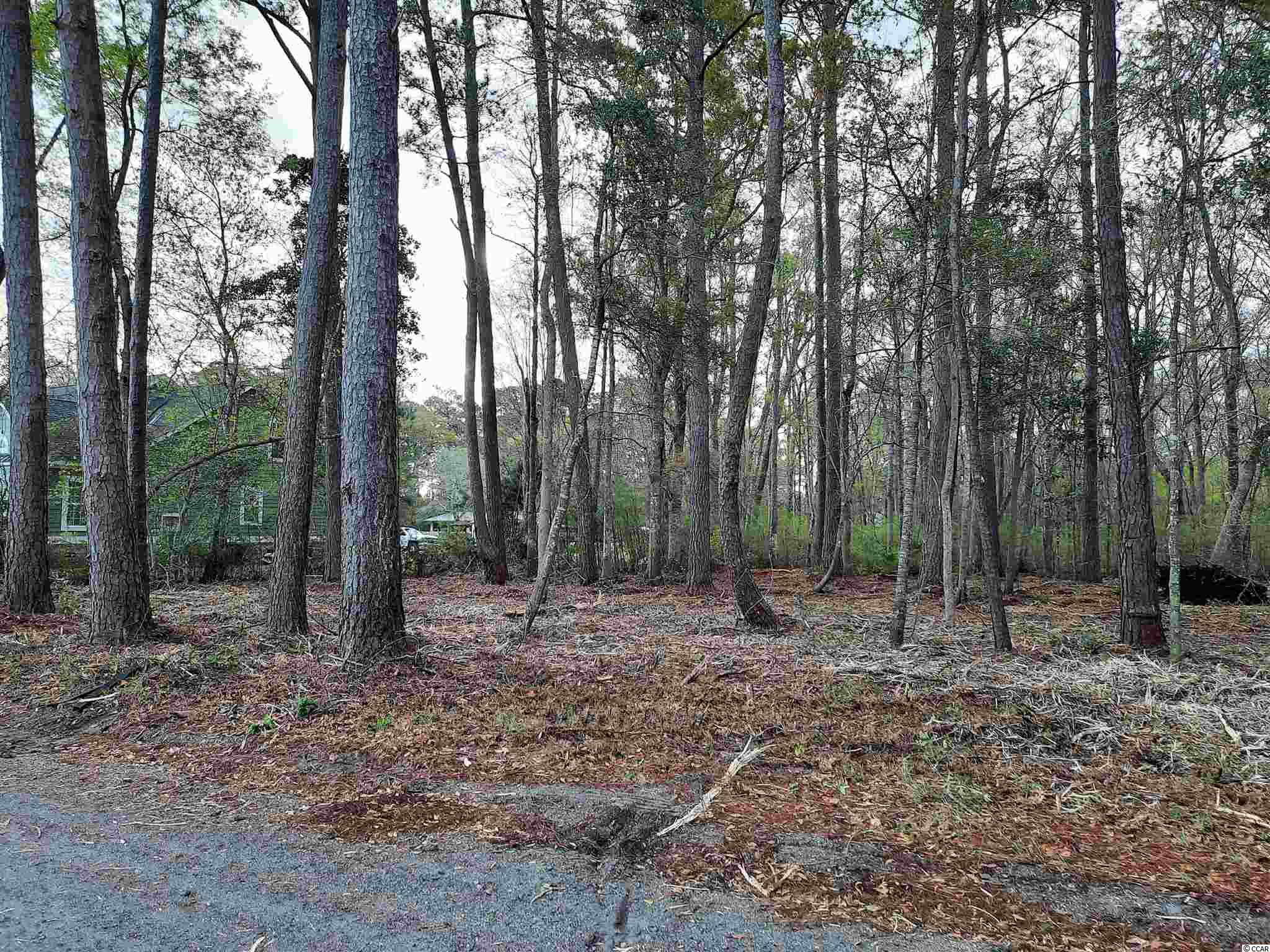 Rare chance to own one of the last vacant no HOA lots left in Murrells Inlet. Berkeley Ct. is located just off the beaten path , yet, so very close to all the action ion Murrells Inlet. This lot, at half an acre, has all the room you could need for every you you have. Camper, boat, tractor, trailer, you name it, there's room for it. Very quiet street with deed restrictions limited to stick built homes only. This lot is a short golf cart ride to the Murrells Inlet Marshwalk/Murrells Inlet Boat Landing/ Huntington Beach. Lot inventory for Murrells Inlet is extremely scarce, don't let this one get away from you .