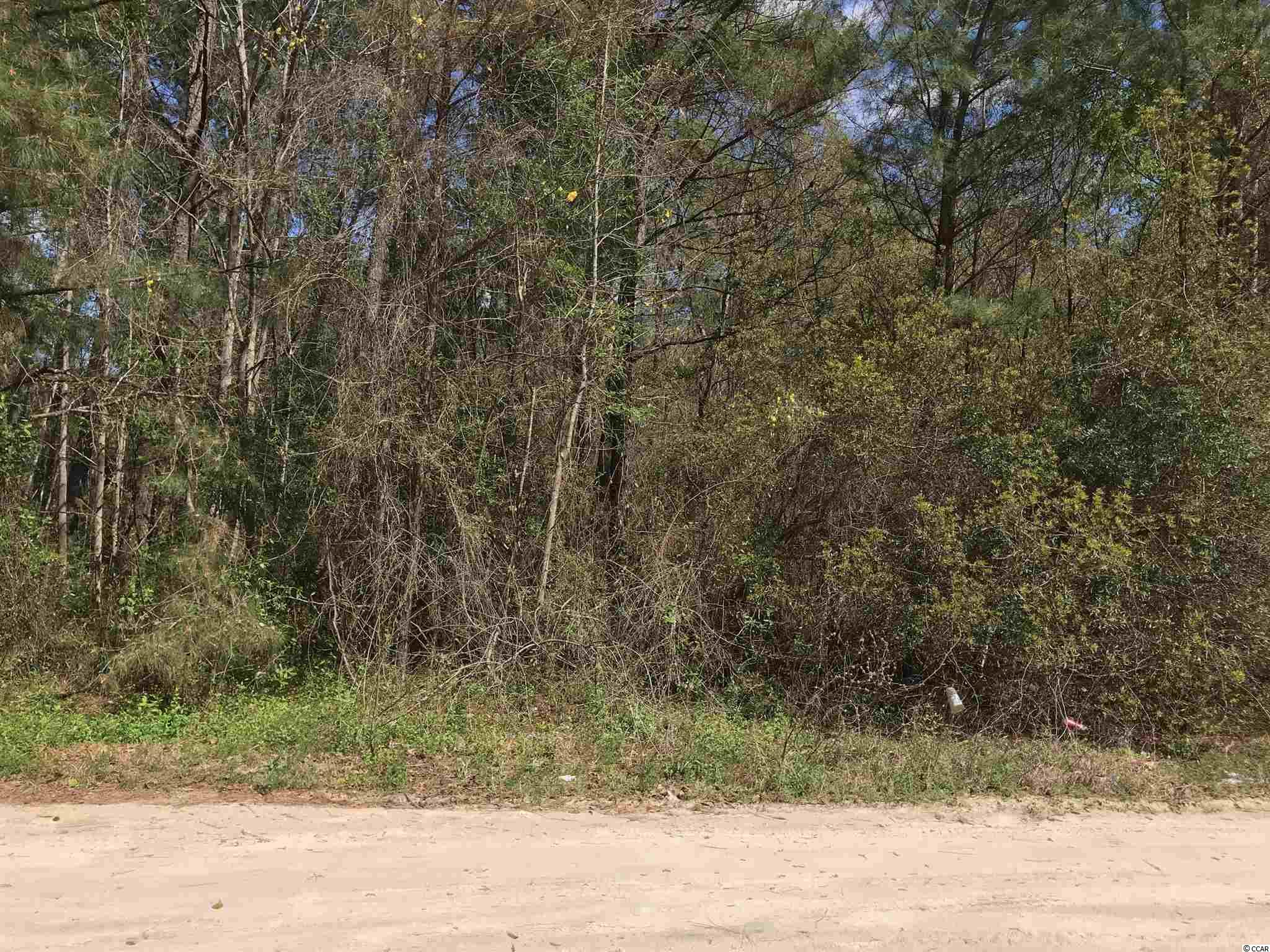 Just under a half acre lot with no HOA's. Zoned for a mobile home. Located just outside of Historic Downtown Conway and a short drive to the Atlantic Ocean. Contact your agent today for more information and to see this lot.