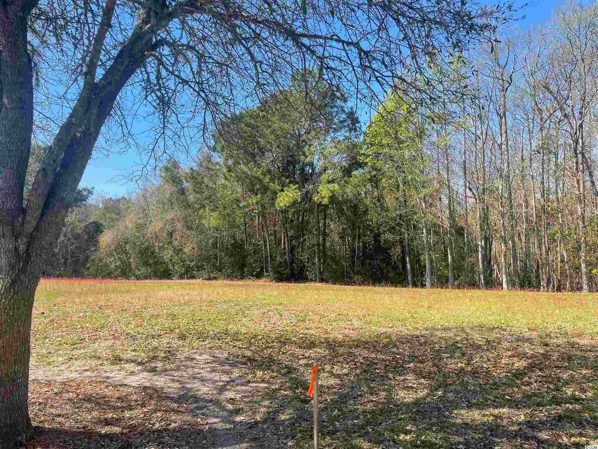 Nice lot in a great location in the wonderful neighborhood of Charleston Landing in North Myrtle Beach. This lot is wide and backs up to woods and a rear access alleyway. Build your dream home now or in the future. Charleston Landing has a nice pool with great views overlooking the marsh and Cherry Grove, a gazebo, a playground and ponds with catch and release fishing. All this and a golf cart ride to the beach!