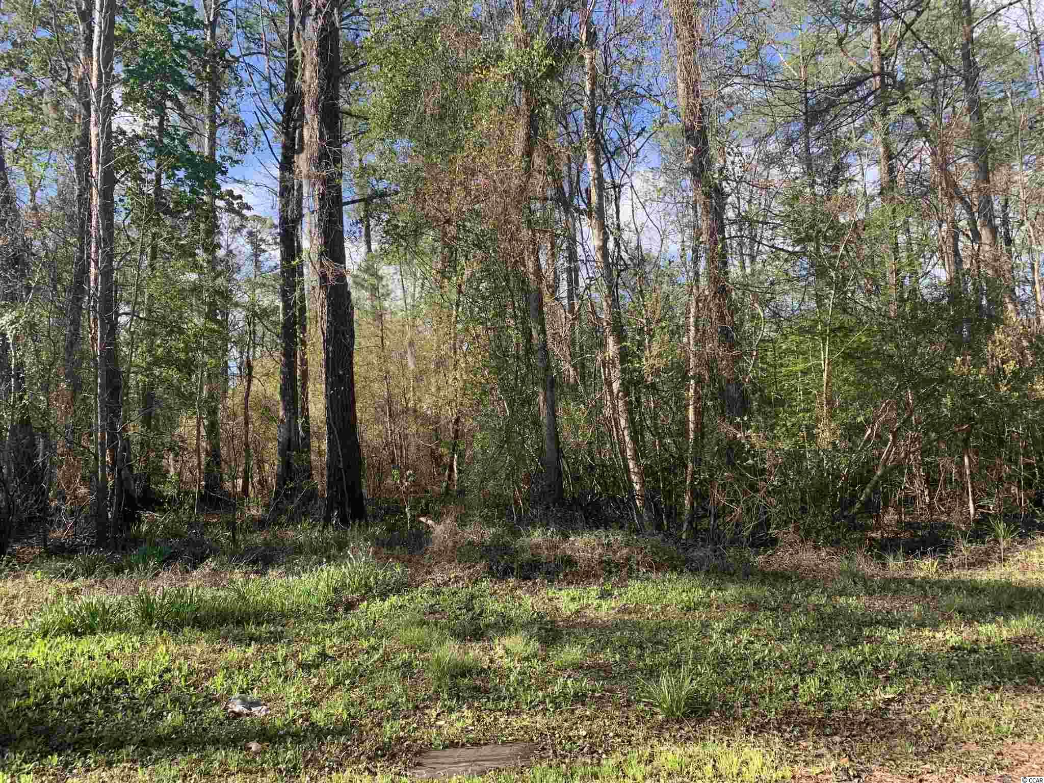 This is a beautiful wooded 1.5 acre lot that sits just adjacent to the Intracoastal Waterway.  The view that the land offers brings so much value to this property.  If you are a lover of both land and water this property is a must see!  It sits just 2.6 miles from Enterprise Public Boat Landing and 4.9 miles from Peachtree Public Boat Landing which makes it easily accessible to the Intracoastal Waterway if you own your own boat.