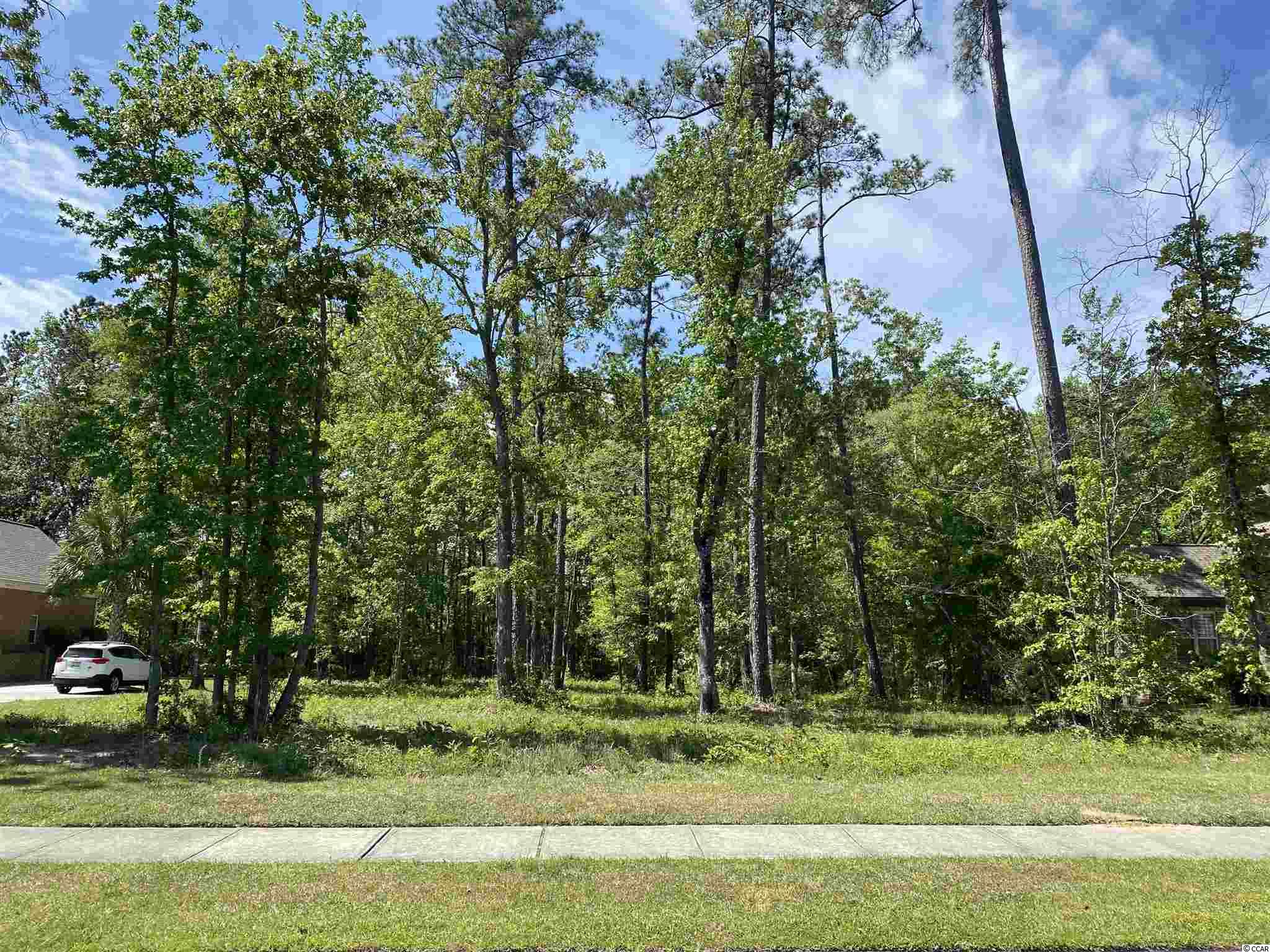 Located in the gated intercoastal community of Cypress River Plantation this lot over half an acre is ready for you to build your custom dream home.  This lot backs on to a heavily wooded buffer providing you with ample privacy in your backyard and is situated well off the main community road on Ellerbe Circle further adding to the quiet surroundings of your future home.  Look no further, Cypress River Plantation boost 24 hour manned gate/security, large clubhouse with a generous size pool, gym, walkways to day docks on the intercoastal, boat launch for all residents, tennis court, basketball court and playground.  Schedule your showing today!