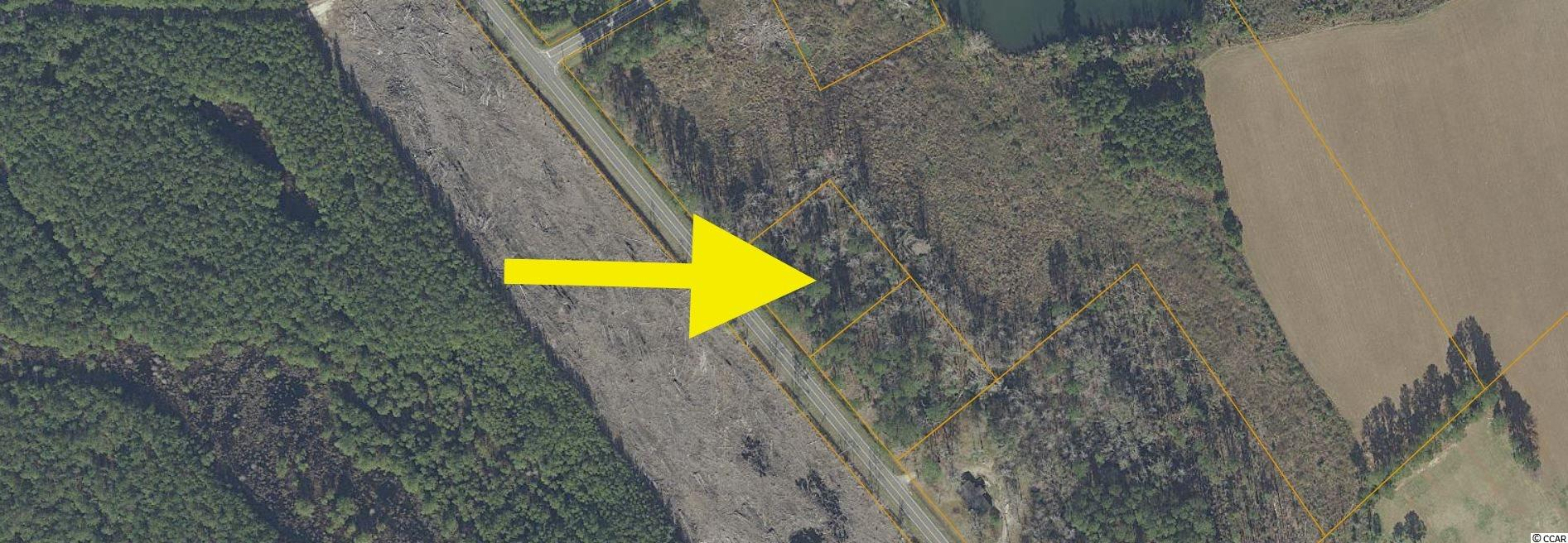 Nearly 1 acre lot on Pee Dee Hwy just minutes from downtown Conway. Great location for a home or just a getaway.