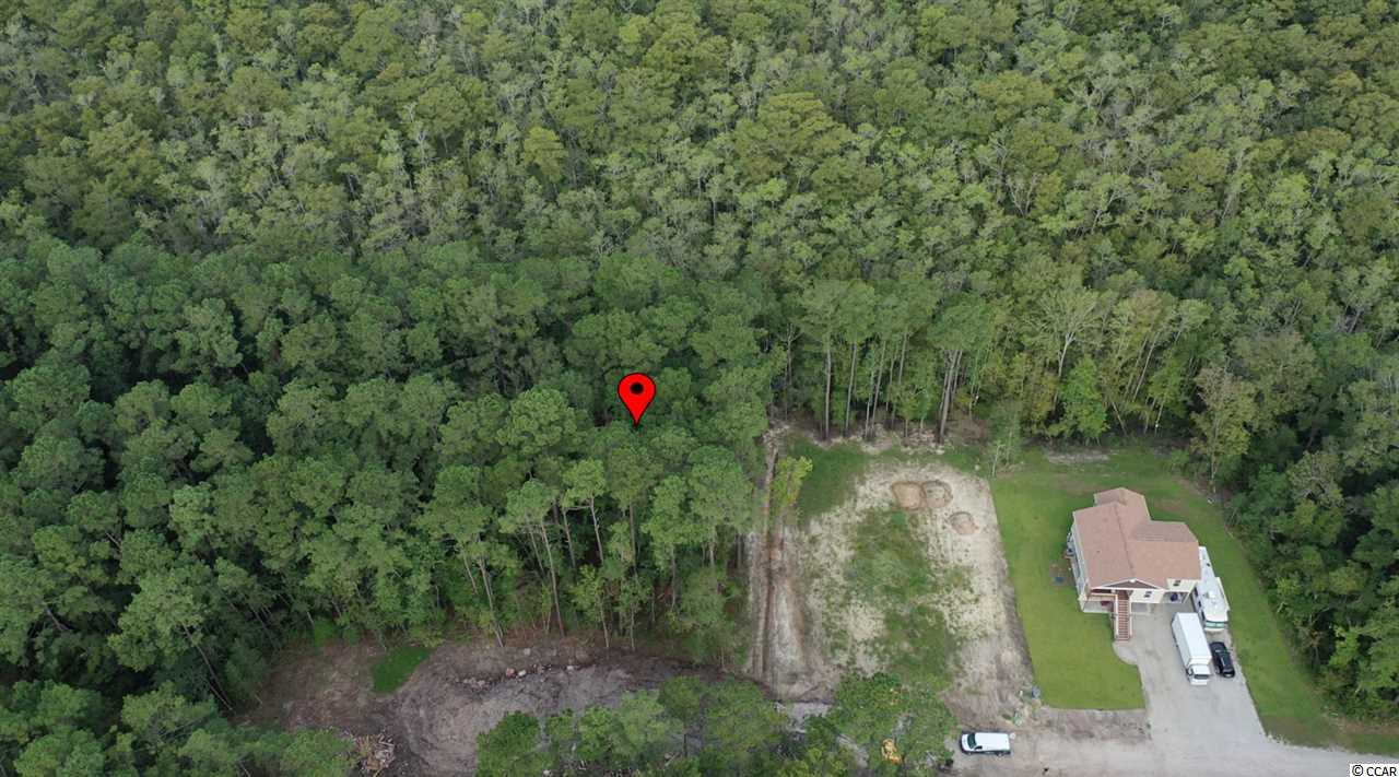 Immediately available is this peaceful .45 acre wooded lot located on the tranquil Fern Creek Court. NO HOA. No time limit to build so come and build your dream home with your chosen builder in your time frame. This home site affords you easy access to the beach and golfing along with all of the other activities and happenings in Myrtle Beach including fun eateries, award winning off-Broadway shows, public fishing piers, and intriguing shopping adventures along the Grand Strand. Conveniently located to your everyday needs, including grocery stores, banks, post offices, medical centers, doctors' offices, and pharmacies.