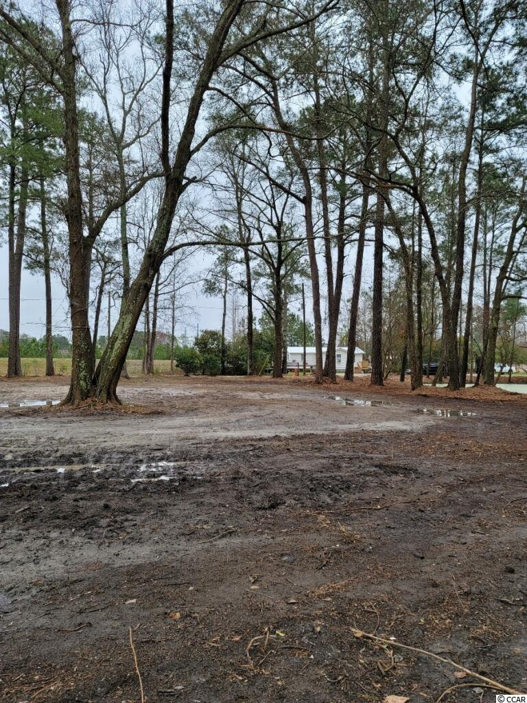 1.66 Acreage with No HOA! What a beautiful area in Myrtle Beach to Build your dream home, close to everything- Socastee/ Myrtle Beach. Easy access to 707/ 544/ 31- area Shopping, Malls, Airport, Market Commons, area Beaches, and Boat Landings. Some of the land and trees have been cleared to access the property. Pond on property also. Opportunity to develop and subdivide. Call your Agent Today to Schedule a Showing! Must Come Visit!