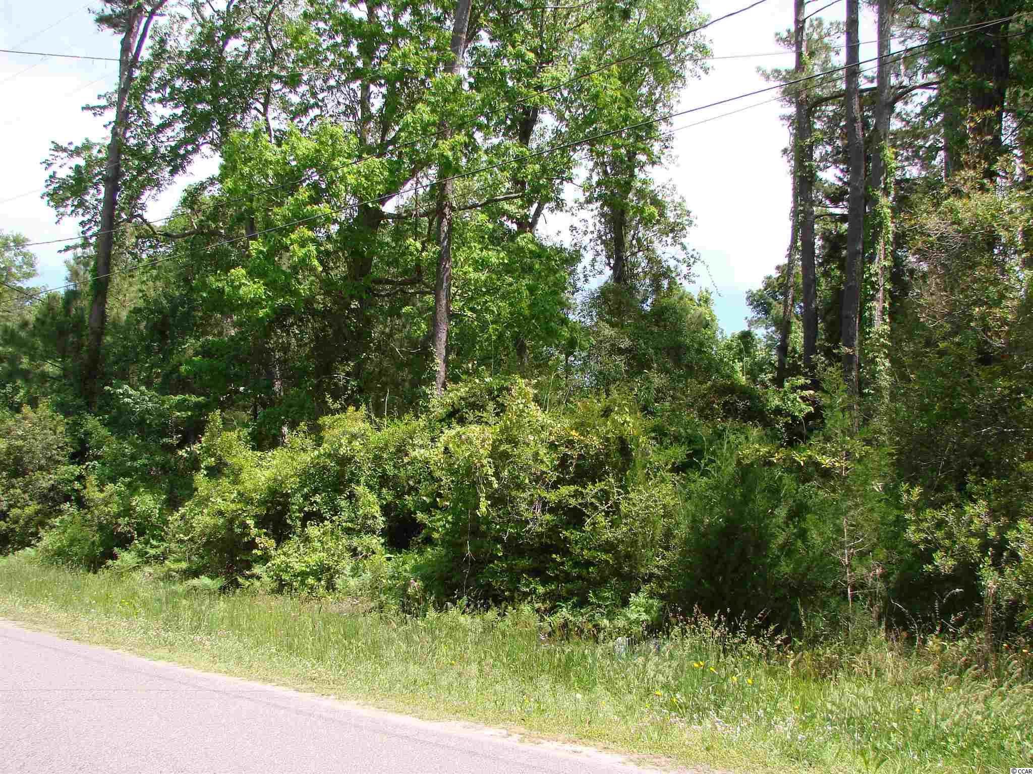 Looking for a homesite to build your dream home in the Cherry Grove Beach section of North Myrtle Beach?  Look no further, you found it! This residential homesite surrounded by custom built homes has No HOA, it's not in a Flood Zone AND you can ride your golf cart to the Beach! Recent survey on file.  Lot is wooded so you can pick and choose which trees to keep (with city approval) and still keep a natural buffer in place.  Close to all that NMB has to offer including area beaches, shopping, golf and area connectors.
