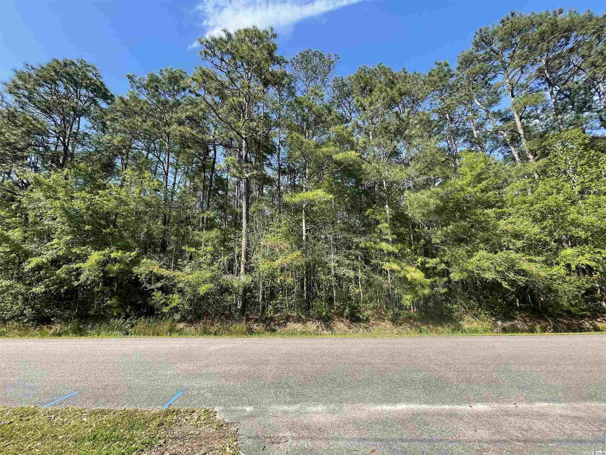 Looking for Acreage in Pawleys Island SC? Here you go! 1 acre located in the heart of Pawleys Island  with no HOA.  A short  drive to the beach, shopping, and restaurants.  Build your dream home on this beautiful lot. Buyer's responsibility to verify and confirm that property is connected to the county water system and sewer water disposal system. Buyer will be responsible for any costs associated with adding a water & sewer tap, and the water & sewer impact fees.
