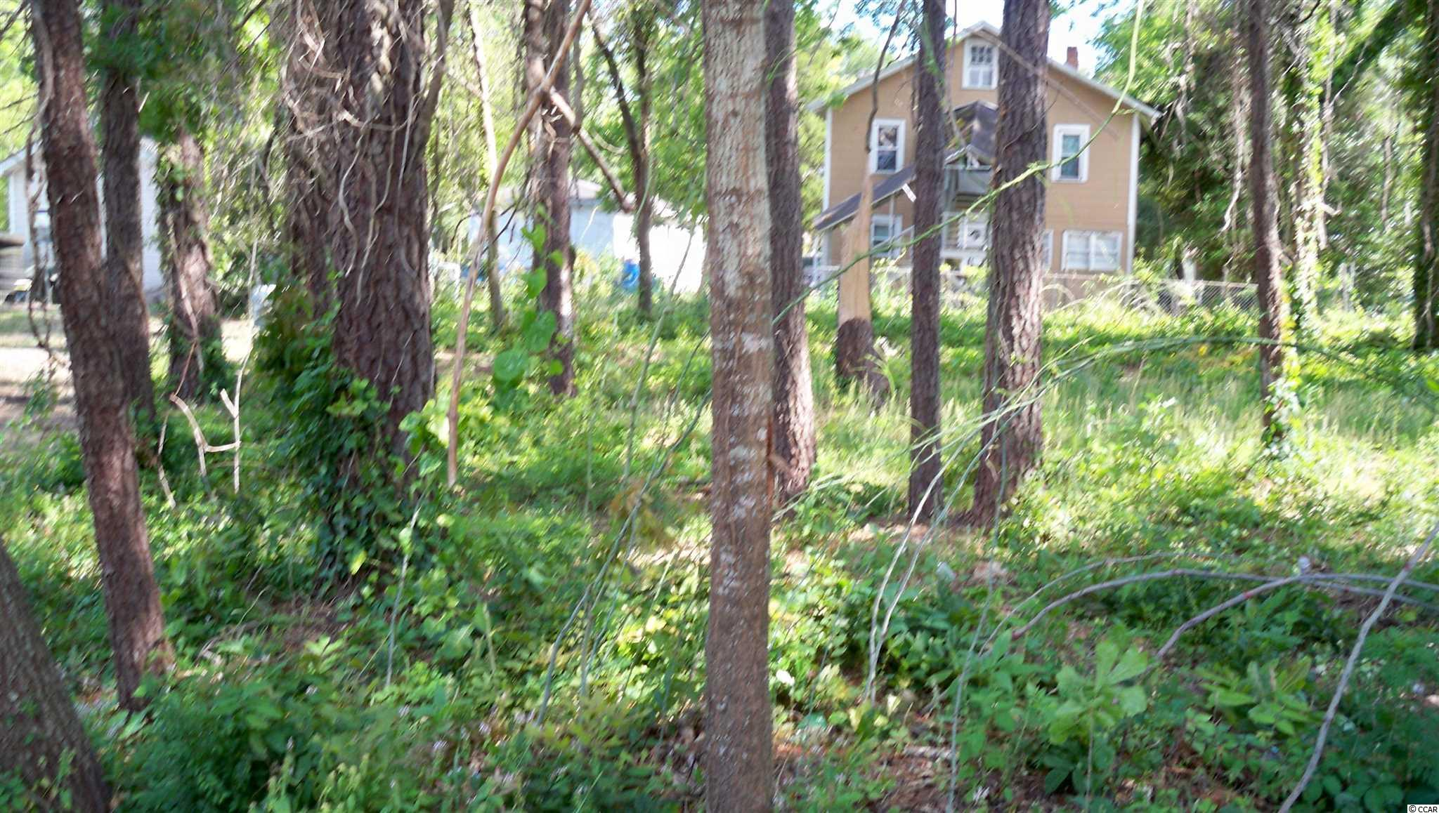 Vacant Lot, on corner of 6 Ave and Gene St. Conway  This is a residential lot, perfect street frontage for your beautiful new Home. Motivated Seller