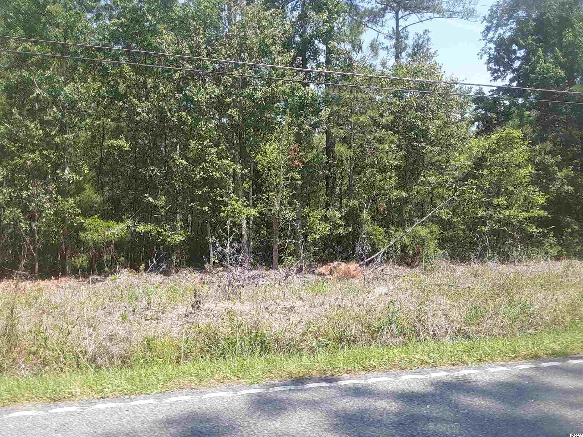 21.7 acres ready to be developed or use as a home site. 1085 feet of road frontage. Measurements are approximate and not guaranteed. Buyer is responsible for verification.
