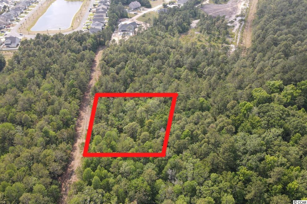 Don't miss out on this incredible opportunity!! This lot is OVER 1 FULL ACRE OF LAND and is in an excellent location!! The possibilities are endless!! Just waiting for you to build your dream home! You are only minutes to the beach, Market Commons, Grand Strand Mall, Garden City Pier, the Marshwalk, delicious restaurants, shops, and so much more! Book your showing today!