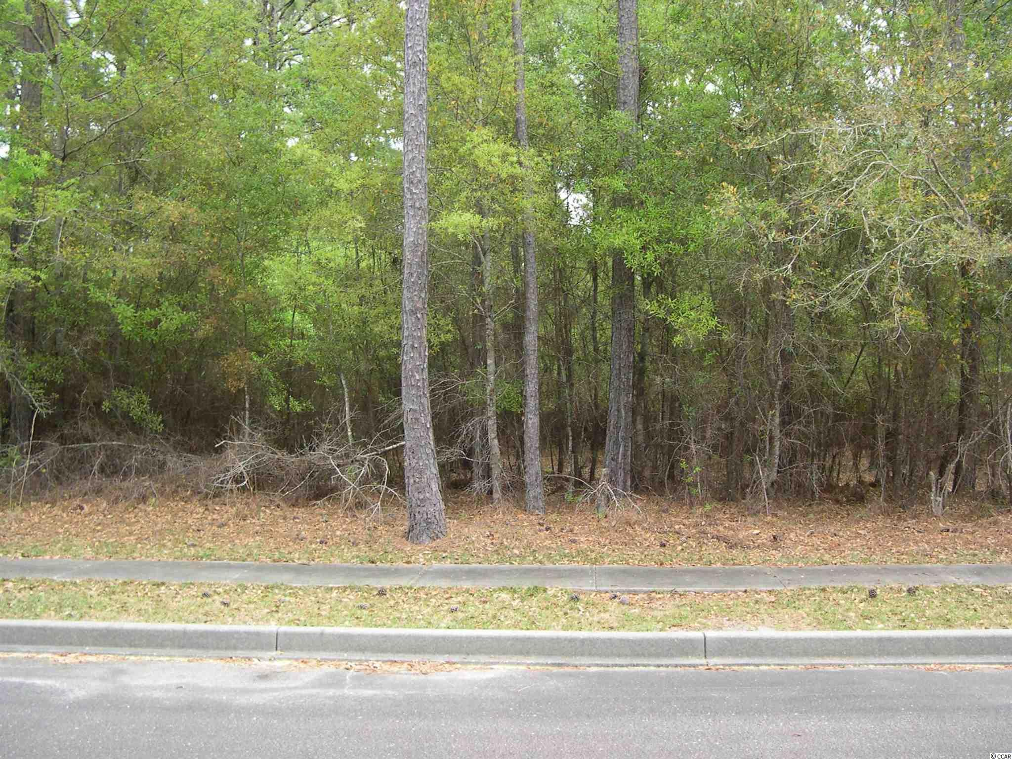 This is a vacant lot in a very nice section of Harmony.   It can be paired up with a boat slip if necessary.