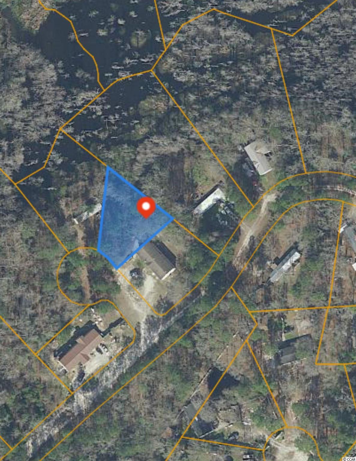 0.30 acre lot with no HOA. Zoned MSF 40 which allows mobile homes. This lot is located about 9 miles from downtown Conway.
