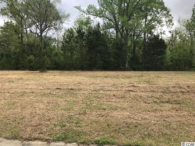Great lot to build your future dream home!  Lot sits up high on a bluff overlooking a wetland area and the Waccamaw River.  Did not flood during past events.  Neighboring lot has a private boardwalk and dock on the river (picture shown).  Dock permit might be possible, but Buyer would need to verify.  All lot measurements are approximate, Buyer to verify.