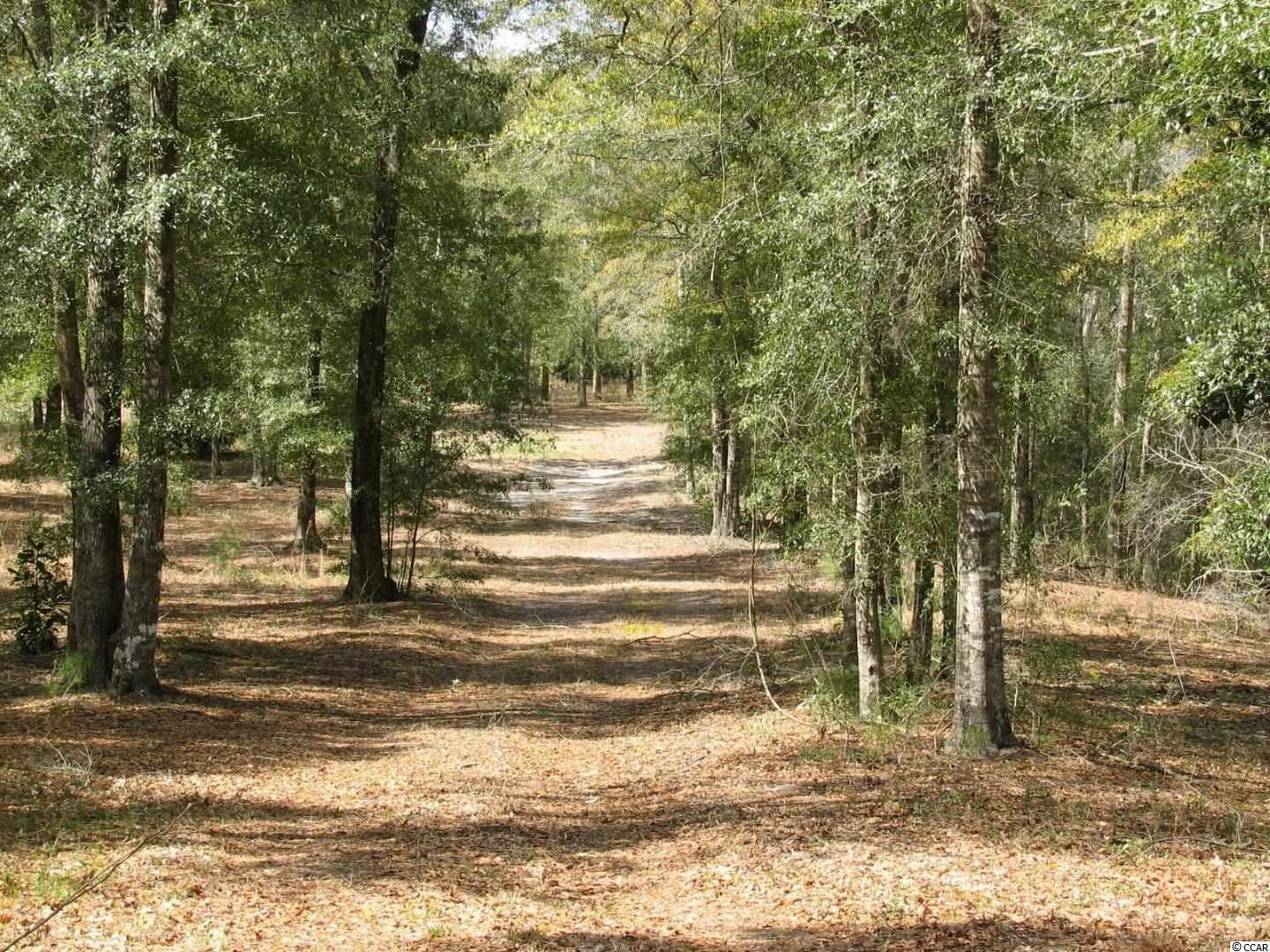 Land - 1.9 miles on Choppee Road on left hand side before you get to Peters Creek from Hwy 701 N. Nine miles from Tidelands Hospital in Georgetown, SC. Measurements are approximate and not guaranteed. Buyer responsible for verification.