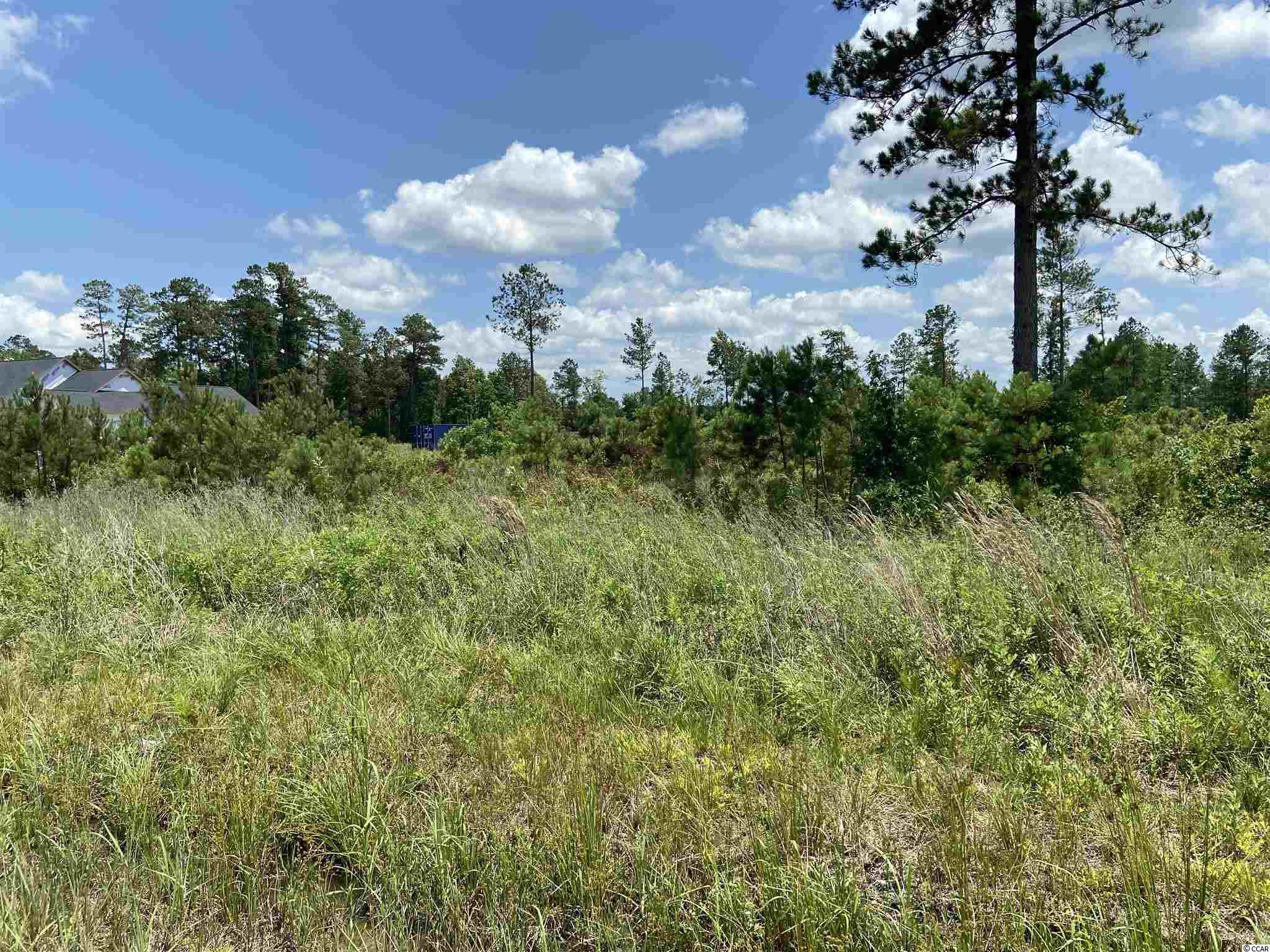 Great lot and location! Perfect place to build your custom dream home! Nice piece of land located within 20 minutes of the beach without the hassle and fees of an HOA.