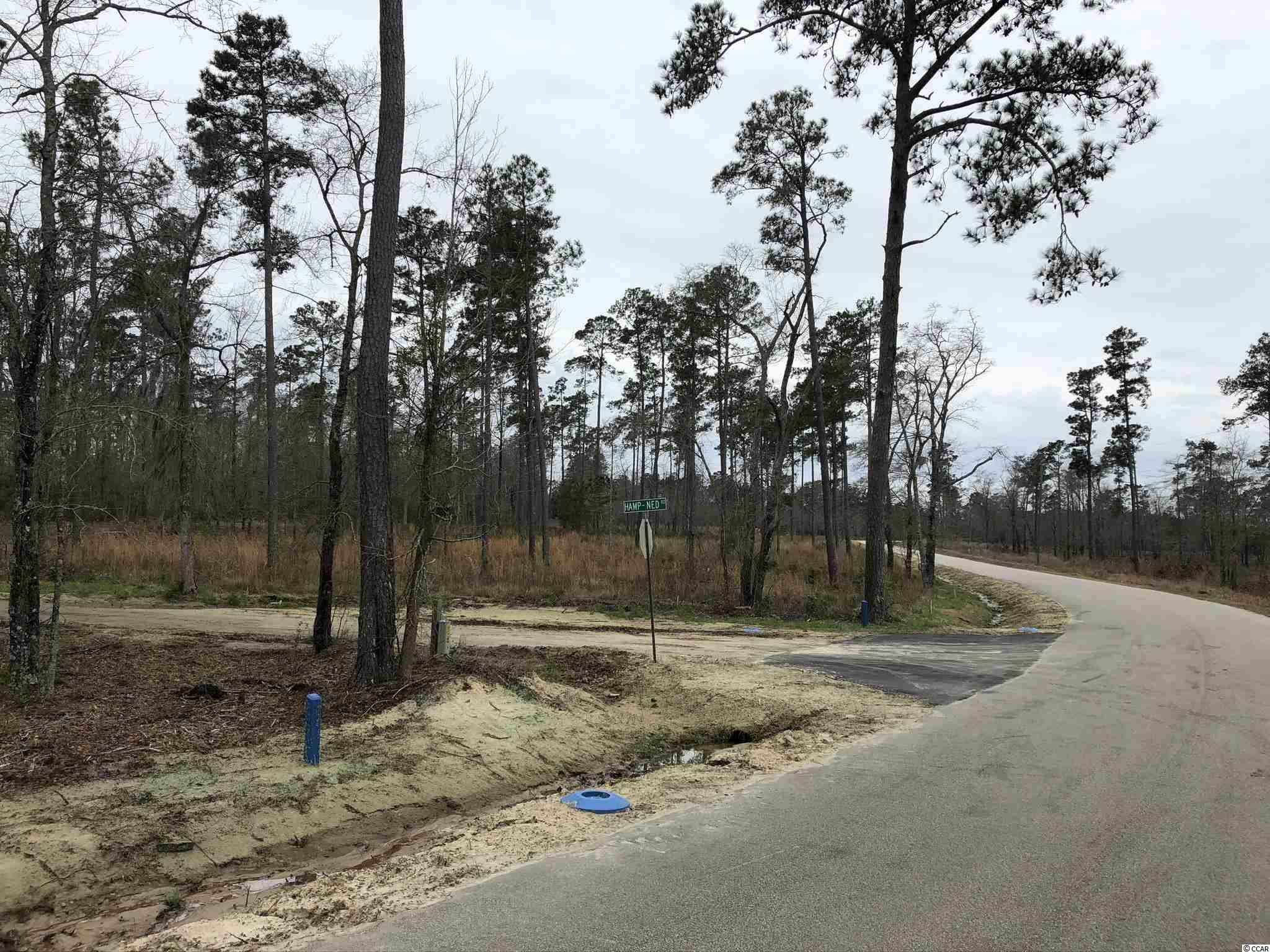 7 of 28 Lots Available in single takedown.  Remaining lots available in 6-9 months.  Water tap fees paid and public water installed to sites.  Septic permits in hand and 1 septic tank installed.  All sites from county roads.  Deed restrictions - Stick Built Only.  Sites are cleared and platted.