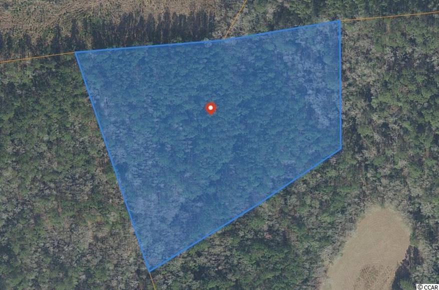 10.19+/- acres outside of city limits between Dongola HWY (HWY 29) and Browns Way Shortcut Rd, just 15 minutes from Historic Downtown Conway! This parcel is land locked with no easement to it yet. This untouched parcel is zoned Farm Timber and is covered in mature trees and surrounded by farm land.