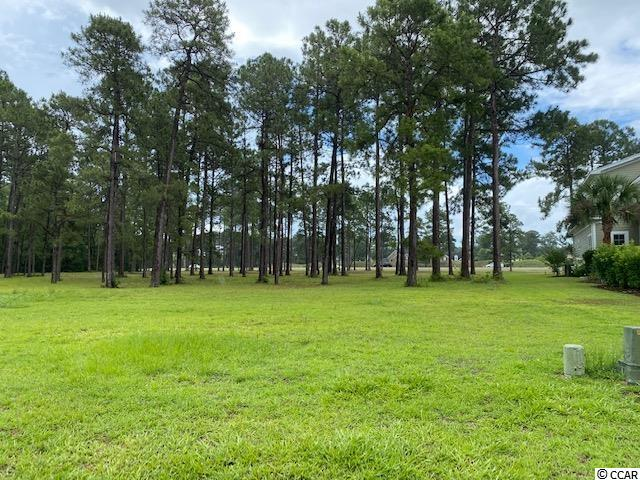 Vacant Lot in one of the most sought out neighborhoods.  Come build your dream home in the beautiful Waterbridge community in the Carolina Forest area.  This communicate comes with many amenities which include the fitness center, amazing pools that make you feel like you're at a resort, swim-up restaurant bar, tennis courts, volleyball courts, basketball courts, and a boat ramp and pier.  NOW is the time to build your Dream Home.