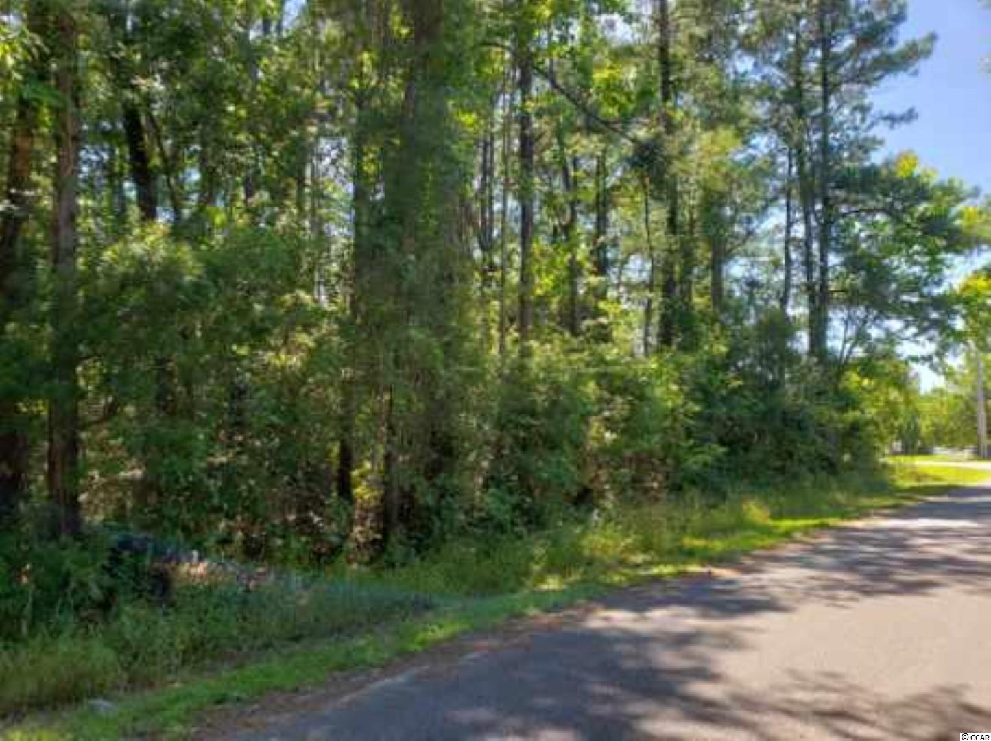 Over half an acre just 6 miles from Main Street-  NO HOA-Zoned SF40-Water and Sewer at the road.  Quiet country setting in Conway.